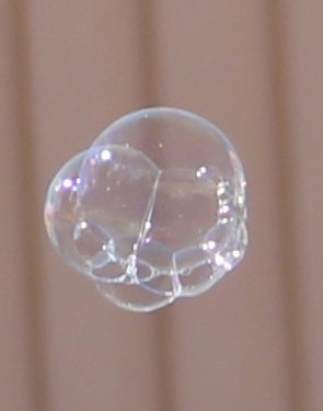Bubbla